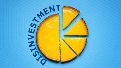 What do firms need for a successful divestment plan?